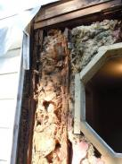 Removing unsafe wood framing and insulation from old addition