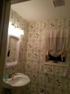 This powder room was sorely in need of a make over
